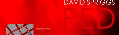 David Spriggs